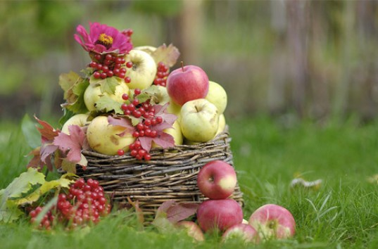 Можно ли на яблочный спас вязать